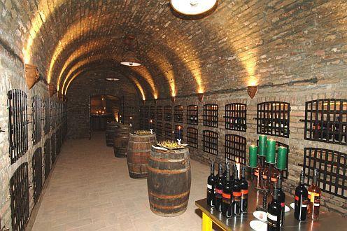 4* Zichy Park Hotel borozója Bicsácson, kiváló borokkal