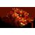 Őszi akciós félpanziós csomagajánlatok, őszi áreső
